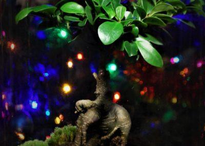 prezent las w słoiku
